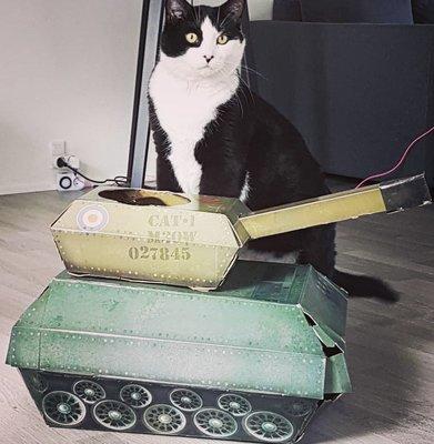[SECOND LOOK]英國雜貨 貓咪坦克 貓抓板 貓紙箱