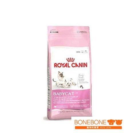 【BoneBone】公司貨附發票 台中歡迎自取 法國皇家 BC34 離乳貓專用飼料 4KG/離乳貓 幼貓