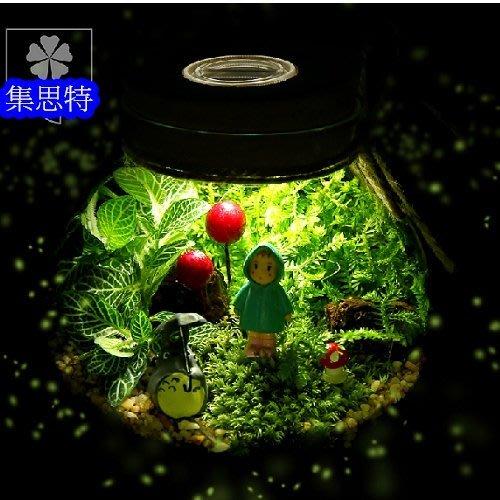 超可愛龍貓植物微景觀園藝苔蘚生態瓶辦公室小盆栽多肉壓花押花乾燥花玻生日禮物集思特(16127)