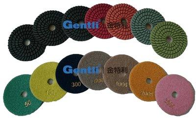 4吋扇形磨片-石材磨片/石材藥劑/石材養護美容拋光/打腊機/洗地機/工業吸塵器/地毯機/清潔用品/清潔設備/菜瓜布