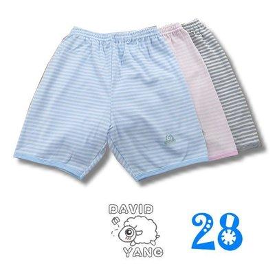 ~~大衛羊的衣店園~~MIT~夏~小三福803~3男孩女孩居家羅紋短褲~28號賣場