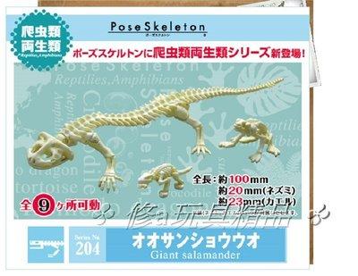 ✤ 修a玩具精品 ✤ ☾精緻盒玩☽ Re-ment 204 骷髏 爬蟲類 娃娃魚 成長史 骷髏骨架 全1款
