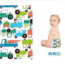 【美國預購】 The Honest Company環保 有機 無毒嬰兒尿布 *2018春季系列*