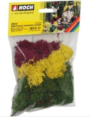 傑仲 博蘭 公司貨 NOCH 造景組 Decorative moss autumnal sorted 08630