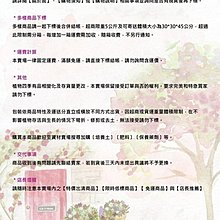 花花世界_襯景植物--*黃邊翠綠龍舌蘭*--美化環境 // 8吋// 高約40-50公分//TP