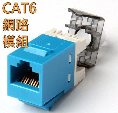 高品質RJ45 網路模組 超6類 Cat6 網路插座 打線模組 資訊面板 工程專用 5入一組