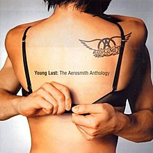 史密斯飛船 Young Lust: The Aerosmith Anthology (1985-1998精選輯 2CD)