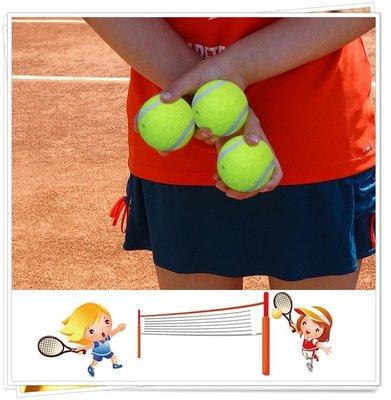 【TreeWalker 露遊】074005 彈性軟性 一般 網球 (熱銷現貨)