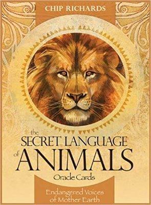 【預馨緣塔羅鋪】全新現貨正版動物密語神諭卡the secret language of animals (46張)