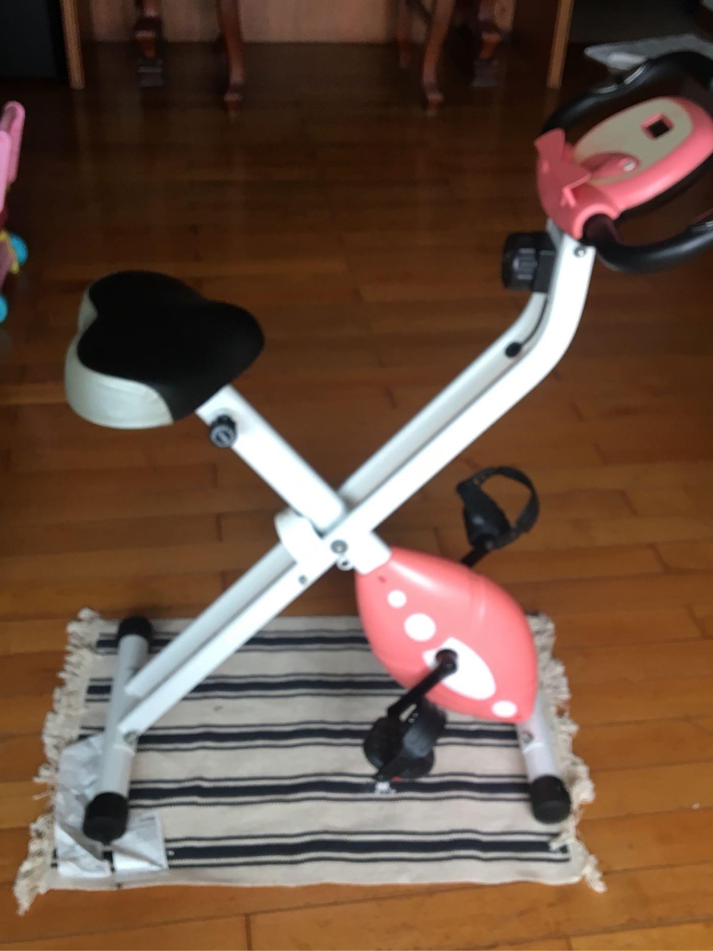 二手  New Fitty Bike 超靜音室內腳踏車/居家磁控健身車 健身腳踏車 在家踩飛輪 甜心粉橘色