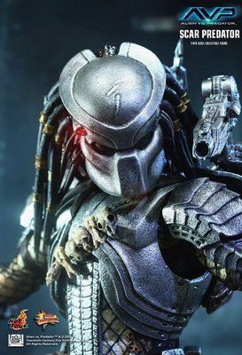 全新從未開封 Hot Toys HotToys 1/6 AvP MMS190 Scar Predator 2.0  Alien
