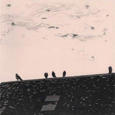 【黑膠唱片LP】心律失常Arrhythmia/史都華史丹普斯Stuart A. Staples-Slang50156LP