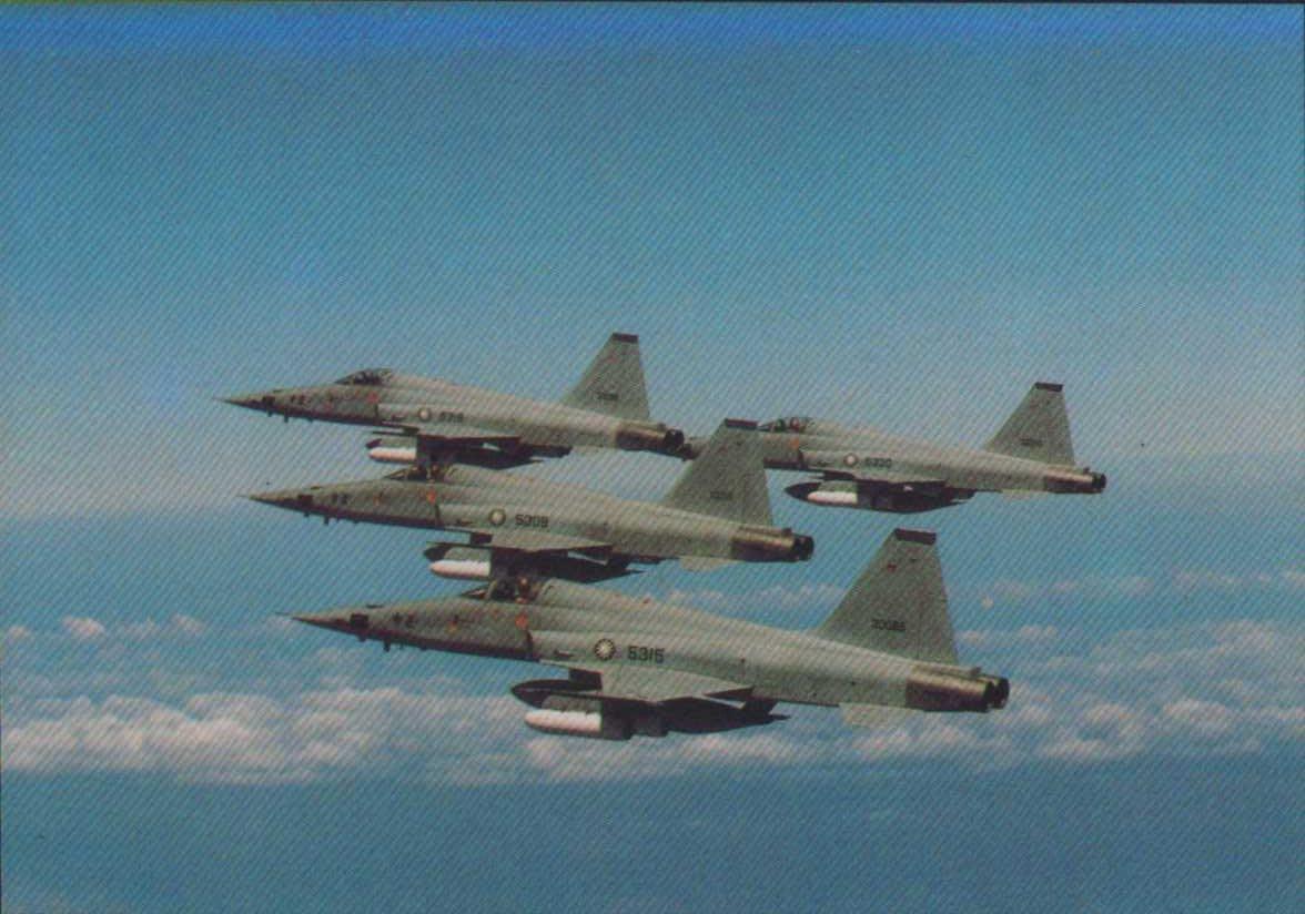 [亞瑟小舖]中華民國空軍F-5E戰機巡邏雄姿明信片1張,上品!!!