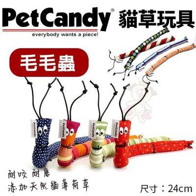 *WANG*PetCandy貓草玩具-毛毛蟲.添加貓薄荷草 耐咬 耐磨.貓玩具.隨機出貨不挑款