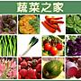 【蔬菜之家】蔬菜花草種子總匯400種以上(全面每包12元.滿額免運費)