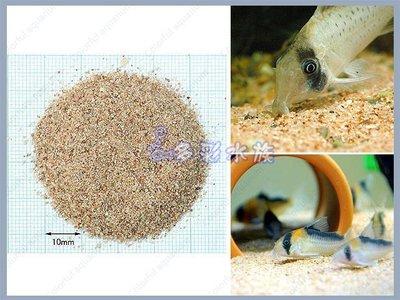 台北►►多彩水族◄◄日本SUDO 《底棲魚、鼠魚砂 / 1kg》底棲魚、鼠魚專用底砂、鼠沙、造景砂