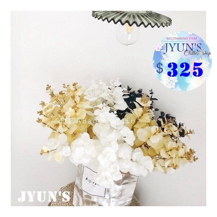 JYUN'S 新品定制款尤加利金錢葉假花仿真花vintage櫥窗裝飾擺拍道具花朵乾燥花 3色 預購