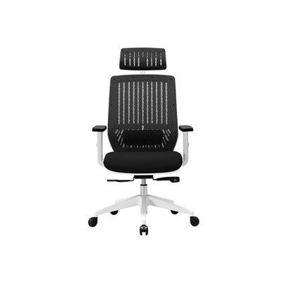 【BNS居家生活館】台灣製BACKBONE-Peacock華麗圓弧機能工學椅/椅子