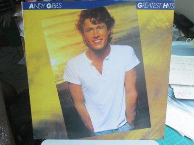 西洋黑膠~Andy Gibb - Flowing rivers 專輯  盤美近全新~原版唱片