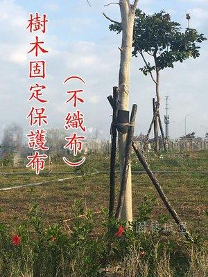 【園藝城堡】樹木固定保護布 ( 整捲寬25cm  x 300尺) 不織布 綠化 果樹支架 行道樹支撐架 新移植樹木固定