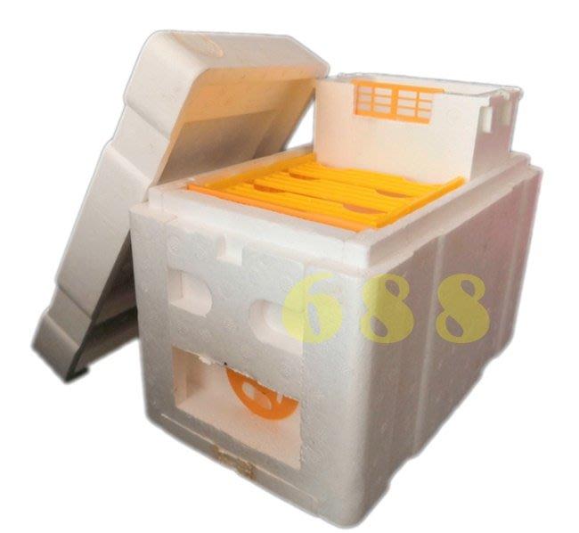【688蜂具】保麗龍育王箱 迷你育王箱 蜂王交尾箱 高密度泡沫蜂箱 儲王箱 現貨 野蜂 洋蜂 蜂具 養蜂工具