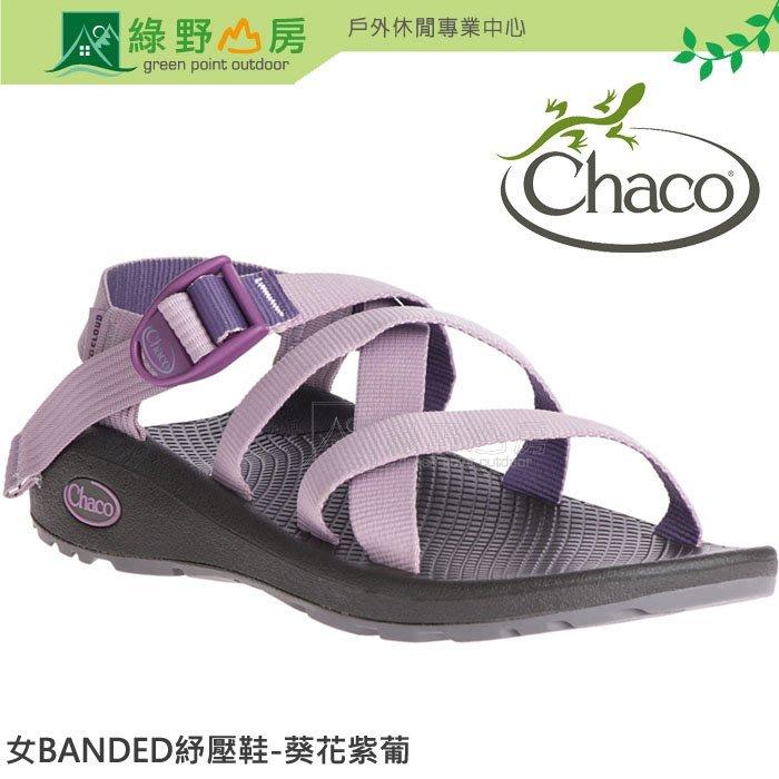 綠野山房 Chaco美國 女 BANDED Z/CLOUD足弓支撐紓壓運動涼鞋 葵花紫葡 CH-BLW01-HG20