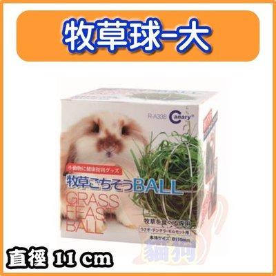 **貓狗大王**Canary 兔子專用餵食牧草球/牧草架/可懸掛、附鍊子 很方便---大的