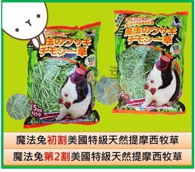 (等貨)【幸運貓】🐰 魔法兔 初割 第2割 美國 特級天然提摩西牧草 兔子牧草 寵物 425g