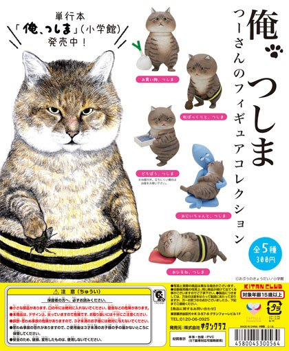 【扭蛋屋】俺是貓津島公仔《全5款》