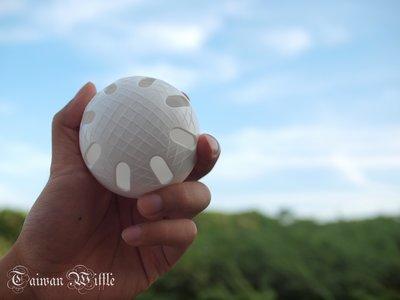 (周年慶+週週抽活動開跑,詳情請入內)東森&民視新聞專訪*超威*威浮球 Wiffle Ball 刮球$90元