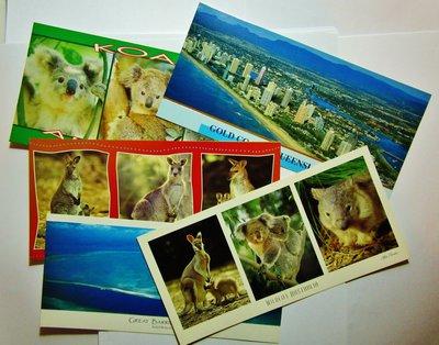 6張全新精美澳洲昆士蘭及樹熊超靚紀念Postcards