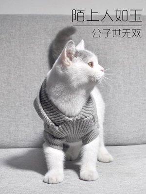 貓貓咪衣服寵物英短小幼貓純色暹羅保暖毛衣無毛貓可愛