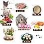 48小時出貨*WANG*【免運】UCAT 全齡貓泌尿化毛呵護配方-雞肉+蔓越莓15kg 高優質動物蛋白 貓糧