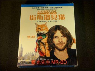 [藍光BD] - 遇見街貓BOB ( 街角遇見貓 ) A Street Cat Named Bob