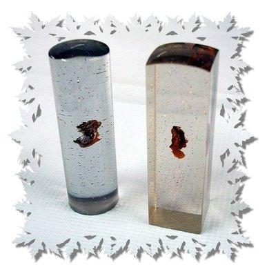 臍帶章~六分方/圓‧透明樹脂