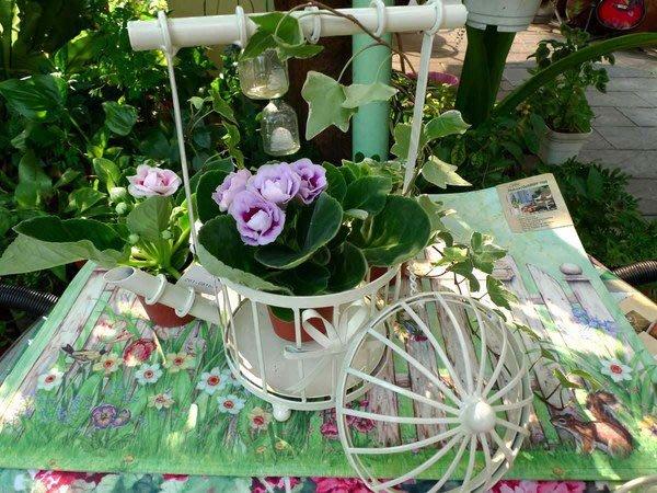花架--秘密花園--維多利亞庭園白色鐵製茶壺造型花架/燭臺