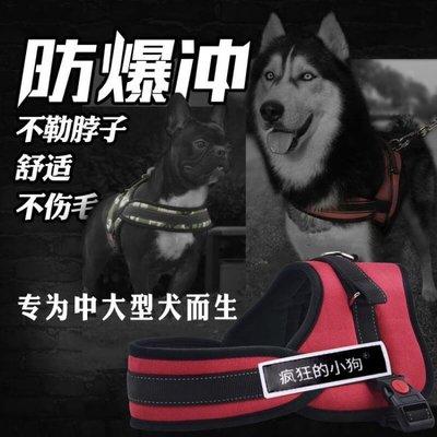 狗狗牽引繩胸背帶金毛狗背帶中型犬狗錬子大型犬狗繩項圈寵物用品QM