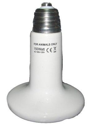 遠紅外線陶瓷加熱器 150W 不發光 歐洲CE安全性認證 生產成本高 防爆 品質保證 兔子 幼兔 虛弱小動物 適用