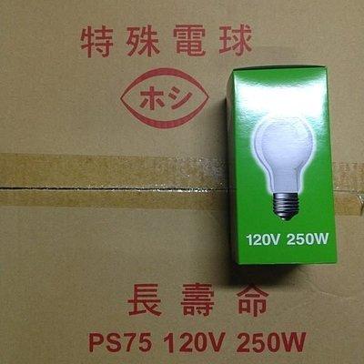 《小謝電料》自取 250W 燈泡 200W 燈泡  木川 E27 110V 新北市