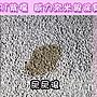 ☆國際貓家抗菌除臭TOP1,瞬間消臭☆BOXCAT紫標 抗菌除臭奈米銀粒子小球貓砂30L經濟組