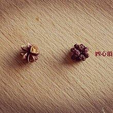 【甦】☆香麻辣油☆ -- 頂級四川大紅袍 非基改芥花油精製 【香麻版 / 加辣版】
