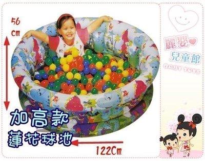 麗嬰兒童玩具館~夏日樂園新版加高加大游泳池/充氣球池二用/附100顆球(120*56cm)