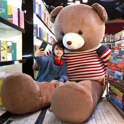 【安安3C】泰迪熊熊貓公仔抱抱熊大號抱枕娃娃女生大熊毛絨玩具可愛女孩玩偶