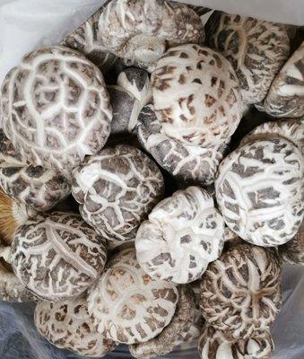 日本白花菇 (現貨) 雪菇 花菇 冬菇 乾香菇 香菇 車輪牌鮑魚 日本干貝 禮盒 魷魚乾 魚翅 花膠