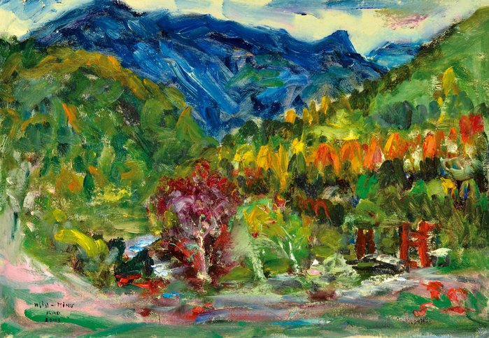 L2311 高秀明 尖石鄉秀巒的風景 2003 20M 油畫 (油彩、野獸派、台灣、苗栗、造橋、本土、張萬傳、蔣瑞坑)