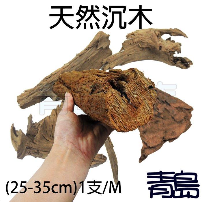 PN。。。青島水族。。。天然沉木 流木 造景裝飾 水族箱 昆蟲箱 爬蟲箱 水草箱 (約25-35cm)==1支/M