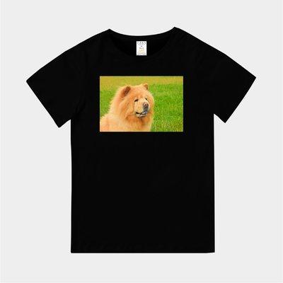 T365 MIT 親子 童裝 情侶 T恤 T-shirt 短T 狗 DOG 汪星人 鬆獅 鬆獅犬 Chow Chow