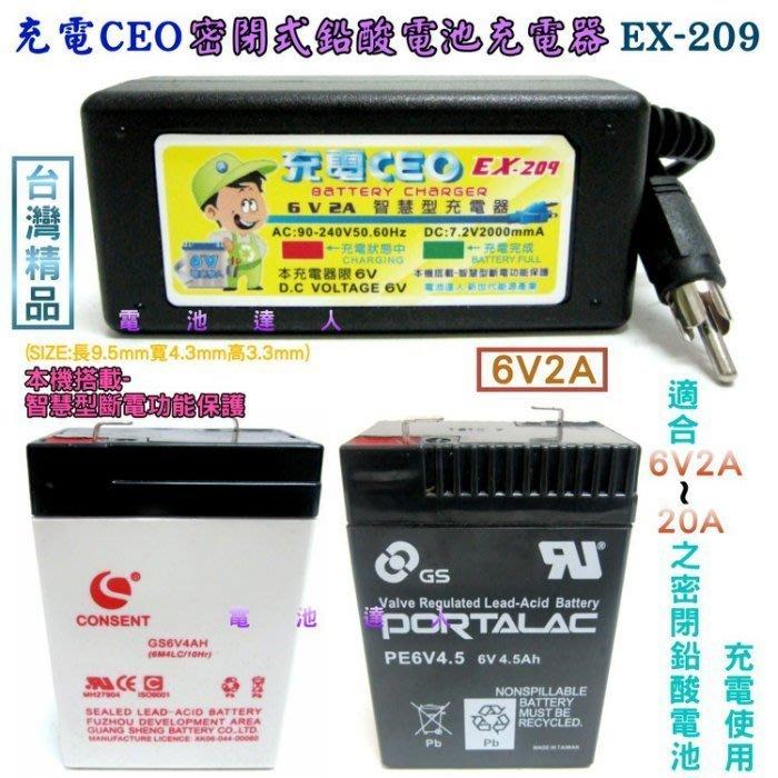 充電CEO EX-209 NP4-6 NP10-6 NP7-6 充電機 6V電池 充電器 WP4-6 兒童電動車 皆適用