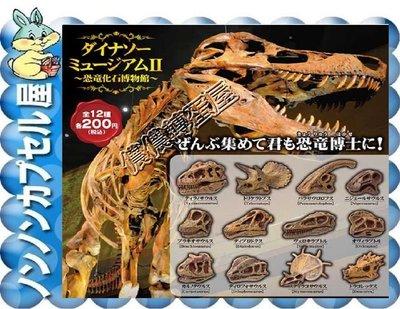 【儂儂轉蛋屋三館】『現貨扭蛋』YELL 恐龍化石博物館P2~全12款~整套販售優惠價(ko.44)