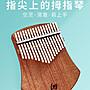 小花花精貨店-Leg卡林巴琴拇指琴卡淋巴17音初學者入門樂器手指鋼琴指姆琴#拇指琴